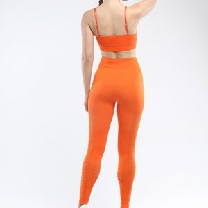 Legging and bra workout set orange Park