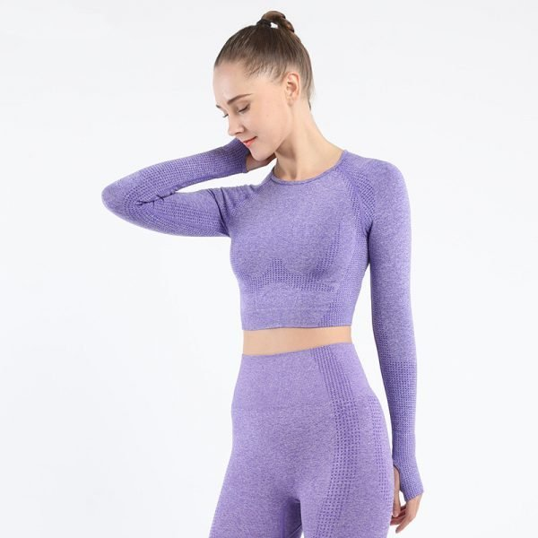 long sleeve seamless yoga top purple