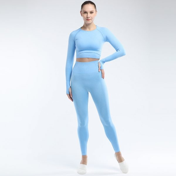 seamless activewear blue yoga leggings long sleeves tops sets