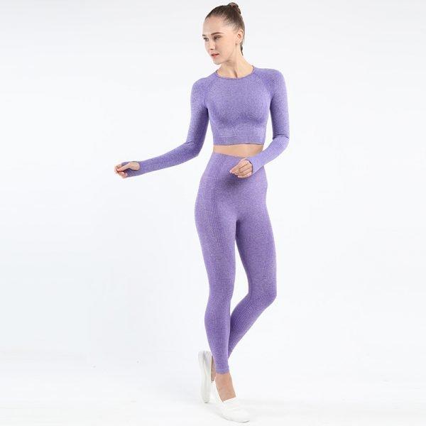 seamless activewear purple yoga leggings long sleeves tops sets