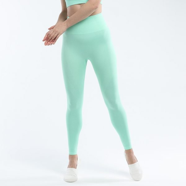 seamless leggings green