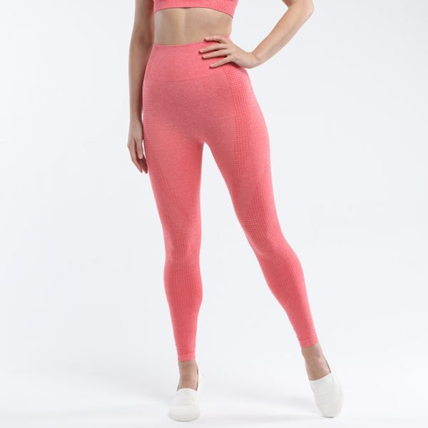 seamless leggings orange red