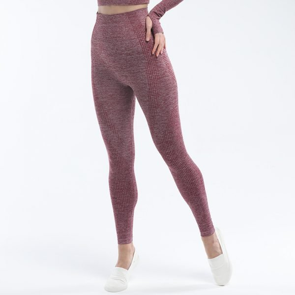 seamless leggings wine