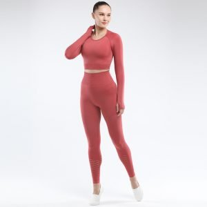 Seamless yoga set women fitness clothing rust red Park